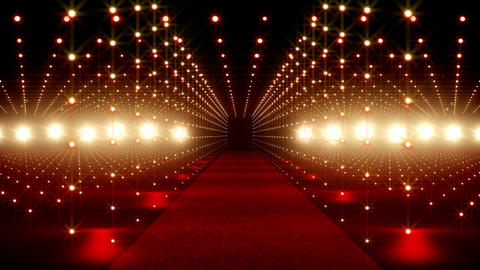 On The Red Carpet 08 Stock Video Footage