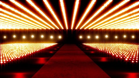 On The Red Carpet v2 01 Stock Video Footage