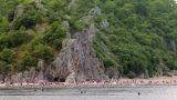 People swimming in sea Footage
