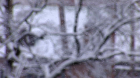 snow 1 Stock Video Footage