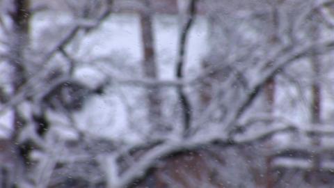 snow 1 Footage