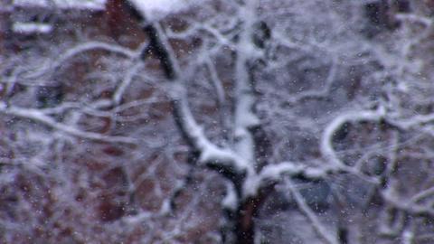 snow 3 Stock Video Footage