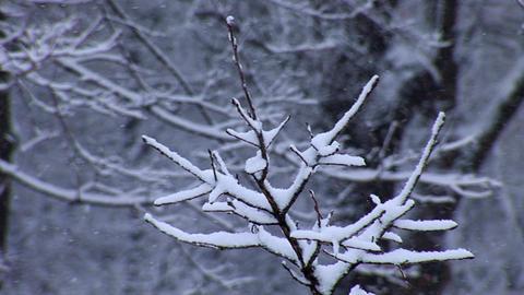 snow 7 Stock Video Footage