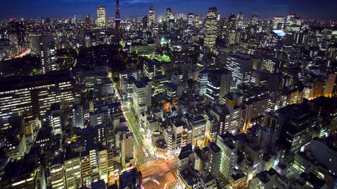 Tokyo Tower and skyline Stock Video Footage