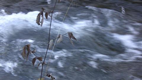 Mountain river - nat.sound Footage