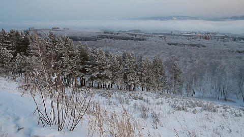 Winter scene 13 Stock Video Footage