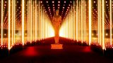 On The Red Carpet 14 Award stock footage