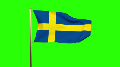 Sweden flag waving in the wind. Looping sun rises style. Animation loop. Green s Animation