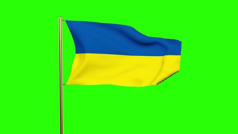 Ukraine flag waving in the wind. Looping sun rises style. Animation loop. Green  Animation