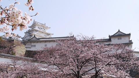 Himeji Castle 157 Footage