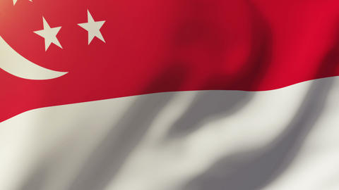 Singapore flag waving in the wind. Looping sun rises style. Animation loop Animation