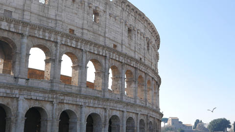 View of the Coliseum. Rome, Italy Footage