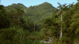 El Nicho: Pristine Cuban Countryside With A Water Stream stock footage