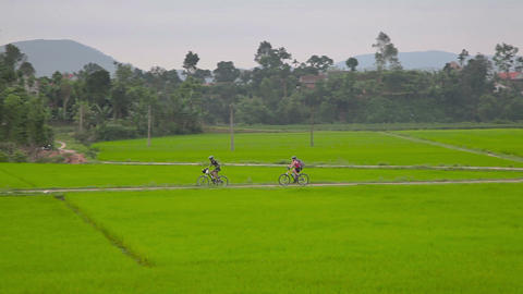 Cycling in countryside Live Action
