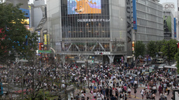 4k scramble crossing tokyo pedestrian interesection japan transport people city Footage
