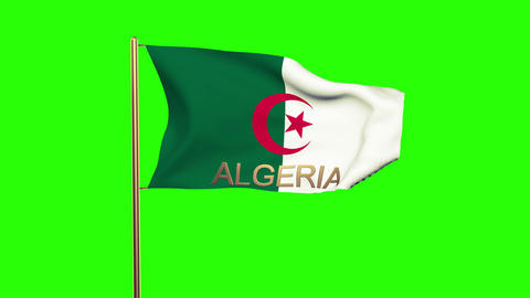 Algeria flag with title waving in the wind. Looping sun rises style. Animation l Animation