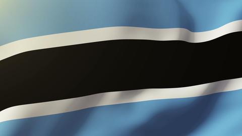Botswana flag waving in the wind. Looping sun rises style. Animation loop Footage