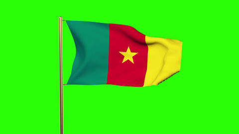Cameroon flag waving in the wind. Green screen, alpha matte. Loopable animation Animation