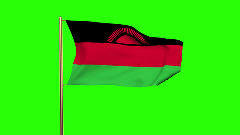 Malawi flag waving in the wind. Green screen, alpha matte. Loopable animation Animation