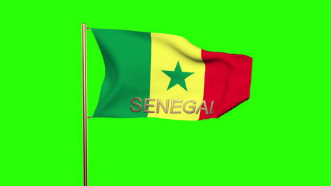 Senegal flag with title waving in the wind. Looping sun rises style. Animation l Animation