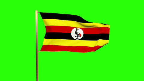 Uganda flag waving in the wind. Green screen, alpha matte. Loopable animation Animation