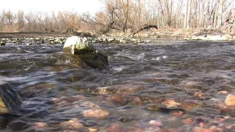 (Seamless Loop) Early Spring Barren Creek Footage