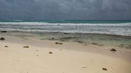 paradise beach playa del carmen caribbean mexico Footage