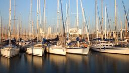 port olympic barcelona spain harbour marina mediterranean boats sea Footage