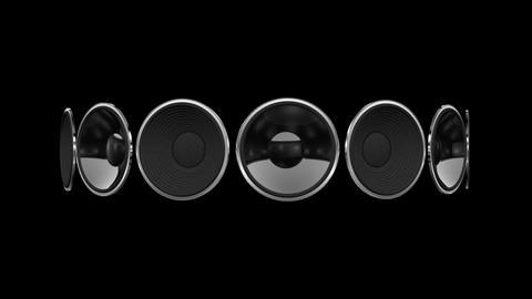 Disco Speaker