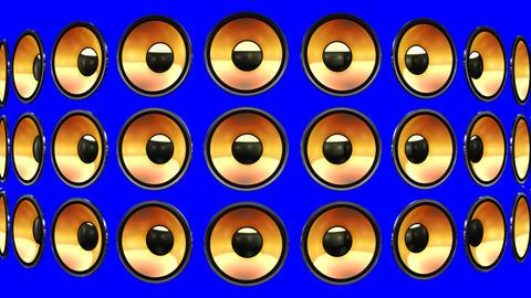 Disco Speaker BM2 HD Stock Video Footage