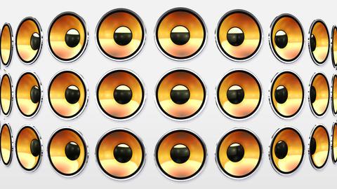 Disco Speaker BW2 HD Stock Video Footage