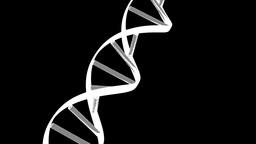 DNA loop Alpha Stock Video Footage