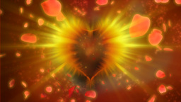 Valentine heart with rose petals Stock Video Footage