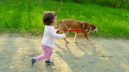 Child Children Little Girl Running With Animal Dog Pet Outdoors Footage