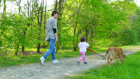Family Life With Happy Mother And Child Walking Dog Outdoor Footage