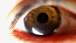 tamara eye00 Footage