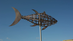 Tuna Metal Sculpture, Fish stock footage