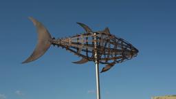 Tuna Metal Sculpture, Fish stock footage