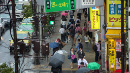 rain tokyo pedestrian japan people city umbrella ภาพวิดีโอ