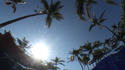 underwater pool palmtrees sun Footage