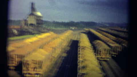 (1950s 8mm Vintage) Trainyard Iron Ore Footage
