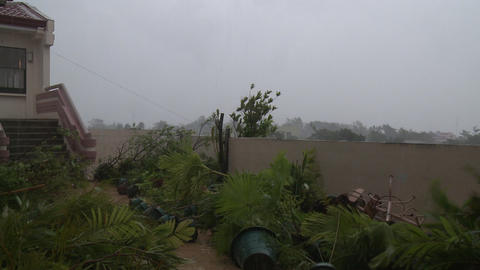 Hurricane Winds Trash Rooftop Garden Typhoon Haiyan stock footage