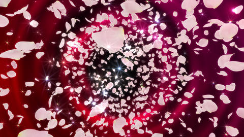 Rose Petals neon Pink front Aw 4 K Animation