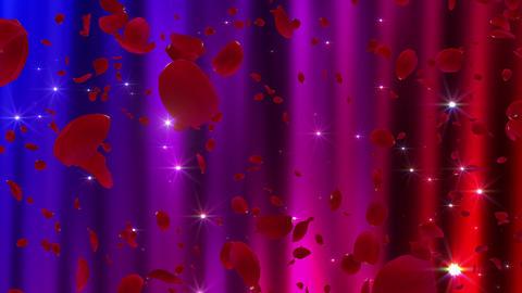 Rose Petals neon Red Cw 4 K CG動画
