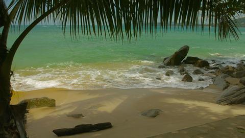 Wild beach without people. Thailand. Phuket Island Footage