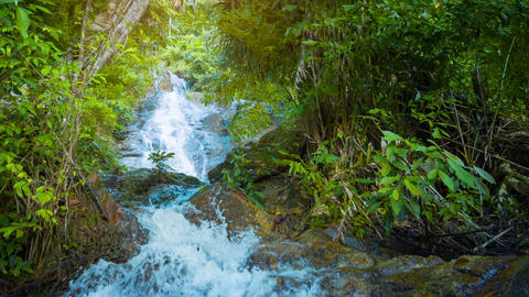 Whitewater Cascading over Natural Waterfall in Thailand Footage