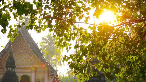 Panning Shot of Buddhist Temple in Luang Prabang. Laos Footage