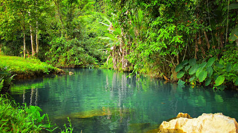 Greenery and Clear Blue Water at Blue Lagoon in Laos Footage