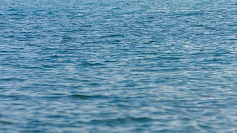 Static Shot of Mildly Choppy Ocean Water Footage