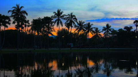 Sunset behind Palm Trees by Pond in Thailand Footage